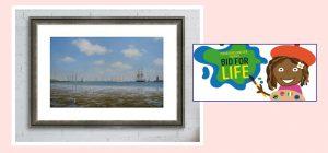 Bid for Life Auction